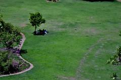 DSC_0414 (rajashekarhk) Tags: gingeefortcomplex landscape arialview lawn greenery tree relax nikon nature naturephotography travel tourism tamilnadu southindia rajashekar