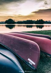 Wetlands Park (Md Farhan's Gallery) Tags: wetland putrajaya putrajayawetlandspark malaysia lensamalaya lake boat sunset canon 600d 1750mm sigma