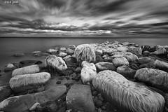 "Air Dried (""A.S.A."") Tags: sandsend northyorkshire northeastcoast britain infrared830nm northsea cloud longexposure slow shutter sonya7rinfrared830nm canonef1740mmf4lusm leefilters leebigstopper nd110 blackwhite mono monochrome greyscale niksoftware silverefex rocks seascape seaweed asa2016"