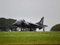 Navy Harrier T.8 (Gerry Rudman) Tags: cornwall royal navy school flight deck operations rnas culdrose hms seahawk zb603