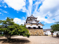 () Tags: olympus omd em1 m43 micro43 microfourthirds olympusem1    zuiko kyoto  cloud  castle 918 japan