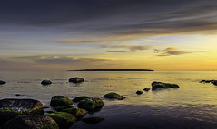 Seaweed coated stones [Explored 2016-10-08] (kaffealskare) Tags: attackfoto attackfoto8 gotland jn sweden sunset stones seaweed stenar solnedgng sjgrs  island outdoor september autumn hst holmhllar lighthouse explored