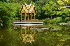 CSC_1036 (stacheltierchen) Tags: munich pagode tempel nikon d3300 flickr summer landscape green reflection trees nepal spiegelungimwasser spiegelung water stadtpark park erholung grn see stone