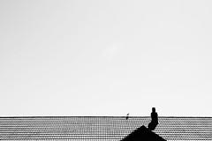 KLUK9197_S (Konrad Lembcke) Tags: uk street photography rhyl promenade sea coast architecture england minimal fuji europe abstract roof negative space travel trip tour sightseeing voyage globetrott ing wanderlust
