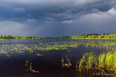 Gloomy view in Northern Karelia (Olli_Pihlajamaa) Tags: lieksa pohjoiskarjala finland fi