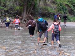 2016-09-p02-narrows-mjl-003 (Mike Legeros) Tags: ut utah zion zionnationalpark narrows river slotcanyon swiftwater wetfeet watchyourstep