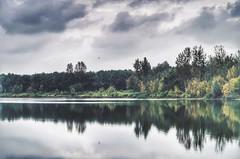 silence (***toile filante***) Tags: landscape landschaft nature natur lake see clouds wolken sky himmel autumn herbst bird vogel silence stille calming calm ruhe