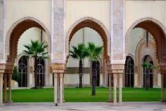 Mdiathque Hassan II (latifalaamri) Tags: mdiathque mosque casablanca morocco palmiers