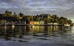 Morning Light (stuart1960) Tags: mull tobermory bay scotland water sea yacht sunrise sunshine morning sailing