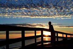 Silence et mue des cieux (Marty Gazio) Tags: r ile soleil couleurs coucher femme dame modle silouettes ombres lumire bleu nuages plage pont mer horizon