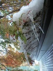 Its Thawing :) (geevee41) Tags: ice snow verandah autumn prairies