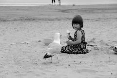 IMG_2919 (Agns Jaffre) Tags: angleterre noiretblanc plage enfant mouette mer glace blackandwhite bw goeland oiseau