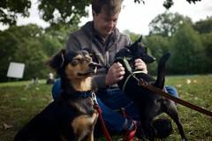 Cashew achieves enlightenment (ian.crowther) Tags: dog pet portrait prospectpark cashew rob contemplation brooklyn henryhudsonbarkway hudson nirvana