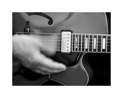 12-guitar (Roberto Gramignoli) Tags: blackandwite bw guitar chitarra music musica jazz hand hands mano mani suonare musicista musicman play playguitar strumentimusicali musicinstruments