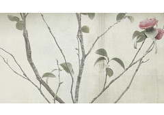 up and out (RL Mulholland) Tags: tree texture leaves vintage branches camellia textured upandout lesbrumes