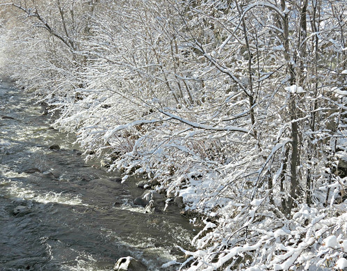 Snow Along the Creek in the Month of May