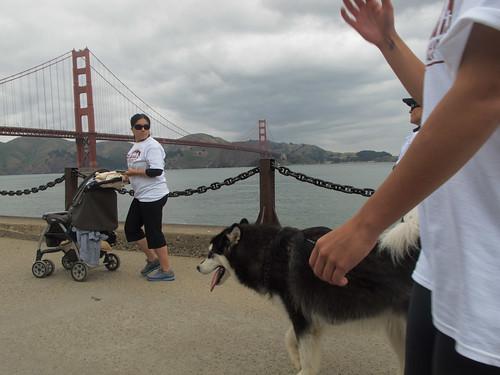 Golden Gate bike
