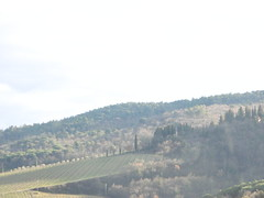 DSCN9575 (foodwinemodpodge) Tags: chianti