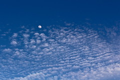 path with heart (alight) Tags: sky moon clouds flickr path alight heartfield heartcloud  askdoesthispathhaveaheart