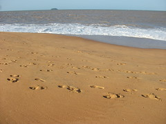 Plage, Remire-Montjoly (laurevenier) Tags: beach guyane frenchguiana remire montjoly