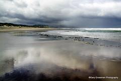 Reflections (Gary Grossman) Tags: ocean sea seascape beach water rain clouds oregon reflections landscape coast sand surf pacific showers seashore pacificcity