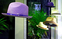 FLOATING HATS (marc falardeau) Tags: window spring purple may hats floating panama queenstreetwest gayphotographer urbanneversuburban