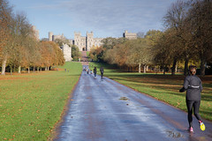 Running Home (Hector16) Tags: autumn trees england castle cloudy britain royal running windsor runner berkshire windsorcastle thequeen royalresidence