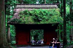 Day 232/366 : Zuishinmon -  (hidesax) Tags: 232366 zuishinmon  okusha  togakushi shrine  nagano japan hidesax nikon d800e nikkor 80400mm f4556 366project2016 366project 365project summer 2016