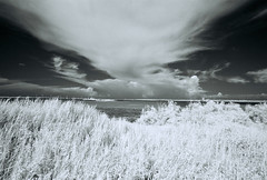 Penghu Infrared-8 (bluetrayne) Tags: infraredphotography infrared infraredfilm blackandwhitephotography landscape landcapephotography analogphotography taiwan penghu clouds