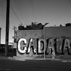 Cadala at night (ADMurr) Tags: la chinatown bw grafitti hydrant power lines ragged edge flag rolleiflex kodak film