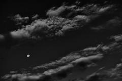 20160821_DP3M0465-monochrome (NAMARA EXPRESS) Tags: landscape sky cloud moon weather deepsky morning summer fine outdoor monochrome blackandwhite toyonaka osaka japan foveon sigma dp3 merrill namaraexp