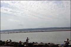 West Kirby Wirral 230816 (1) (Liz Callan) Tags: westkirby wirral sea seaside beach rocks boats ben bordercollie dogs sky water waves buildings lizcallan lizcallanphotography