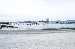 Vistas  Toralla (Jose Manuel Barreiros Galia) Tags: galicia galifornia aga agua mar nubes compaia vigo pontevedra toralla isla pescador pesca playa arena volver diferent