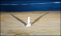 Blurred Hurry Ghost (shlomo2000) Tags: strand hurry white beach espana spanien muslim veil woman sony rx100 mk iii night atlantic ocean baskenland