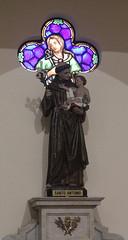 Imagem de Santo antonio (PortalJornalismoESPM.SP) Tags: santoantonio jesus vitral maria igrejamatriz sobernardo dadomotta