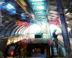 https://foursquare.com/v/rapidkl-ara-damansara-kj26-lrt-station/4ec08fc12c5b252c19fe93ce #holiday #travel #trip #trainstation #foursquare #Asia #Malaysia #railwaystation #selangor #petalingjaya #aradamansara #evolveconceptmall # # # # # # (soonlung81) Tags: holiday travel trip trainstation foursquare asia malaysia railwaystation selangor petalingjaya aradamansara evolveconceptmall