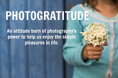 Photogratitude (Nathalie Le Bris) Tags: flor flower blanco white mano hand