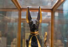Anubis Shrine of King Tut's Tomb - Cairo Museum (vercetty00) Tags: anubis shrine tutankhamun tutankhamon cairo museum sony1650f28 egypt