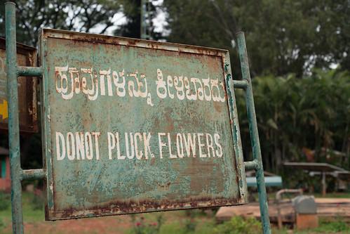 Bengaluru 2016 - Indira Gandhi Musical Fountain Park - DSC07666.jpg