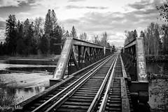 One Track Mind (HarryMiller002) Tags: bridge railroad tracks bitterroot montana blackwhite