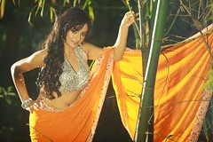 South Actress Madhuchandaphotos Set-3-Hot In Traditional Dress (19)