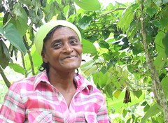 2016 Oct - Luciana with coffee plant (Foods Resource Bank) Tags: haiti caribbean coffee farmers men women pruning improved income humanitarian food security development charity hunger