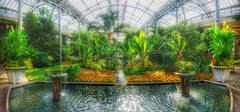 Longwood Gardens fountain (kderricotte) Tags: fountain longwoodgardens pennsylvania water snapseed 1018mm sonya6000 wideangle