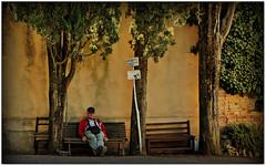 Val d'Orcia. Toscana. (rogilde - roberto la forgia) Tags: divietodicaccia attentialcane caccia street riposo panchina relax solitudine uomo toscana valdorcia chianti brunello montalcino stanchezza ciotola