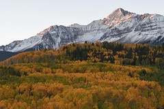 First light on Mount Wilson in the San Juan Mountains, Colorado (jkrieger84) Tags: nikon d500 landscape nature blue sky snow aspens yellow sanjuans colorado mountwilson mtwilson fall color alpenglow