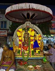 Arulmigu Chandrashekarar - Arulmigu Indushekari - Pournami Purappadu . (Kapaliadiyar) Tags: arulmiguchandrashekarar indushekari pournami purattasipournami kapaliadiyar nikond810 nightevent mylapore mylaporetemple myilai hindutempleculture hindurituals hindu hindutemple southindia