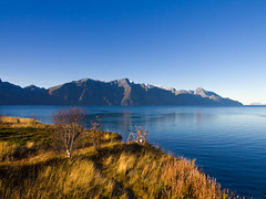Lyngen Alps (S_Peter) Tags: norge norway kafjord kfjord troms autumn mountain bike mountainbike herbst norwegen nord north arctic outdoor sky cloud lyngen alps dji phantom 3 drone aerial