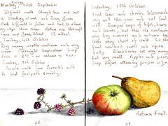 Autumn Fruit (Hornbeam Arts) Tags: sketch painting fruit apple pear bramble