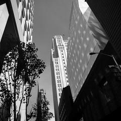 The City (Scott Holcomb) Tags: sanfrancisco california zenzabronicas2 nikkorh135f5cmlens ilforddelta100profilm uv82mmfilter bw 6x6 mediumformat 120film epsonperfectionv600 photoshopdigitalization