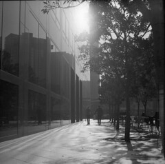 urban light (Bean*) Tags: trees light film buildings los holding hands couple angeles tl candid delta 400 pentacon six ilford